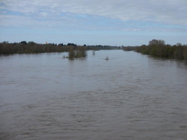 Loire entre Mer et Muides